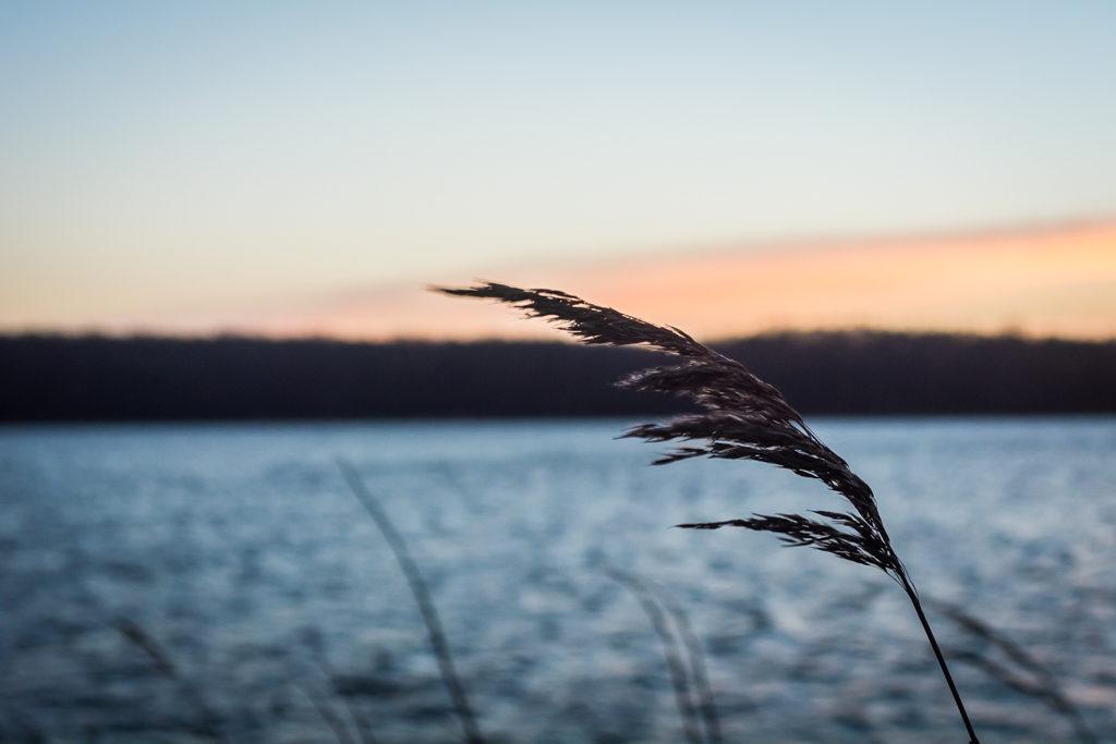 Lichtpresse-Ostsee